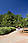 Botanic Garden in Brasilia, Brazil