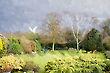 English Garden - Digital work